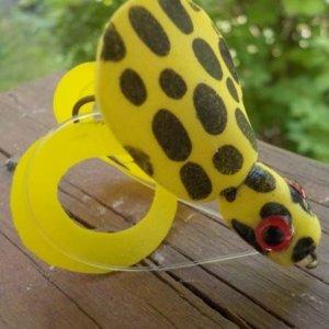 yellowfrog-600